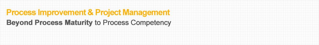 Process Improvement & Project Management - Beyond Process Maturity to Process Competency